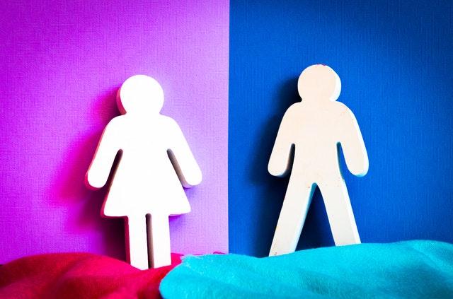 Toplumsal Cinsiyet Nedir?