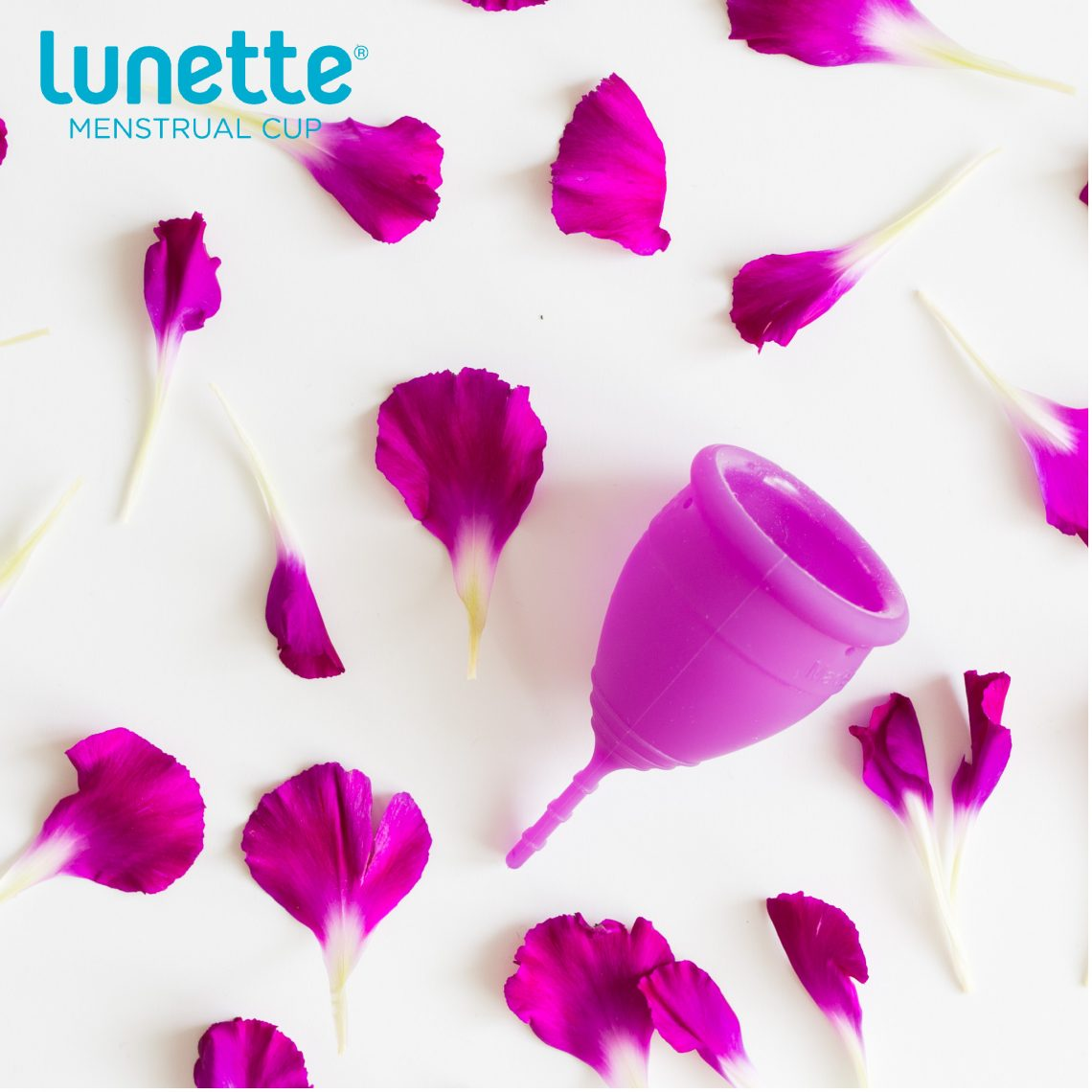 Lunette Menstrüel Kupa