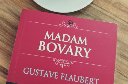 Gustave Flaubert Madam Bovary